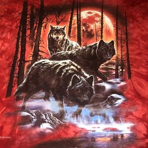 The Mountain sz 2XL 'Fire and Ice Wolves' shirt